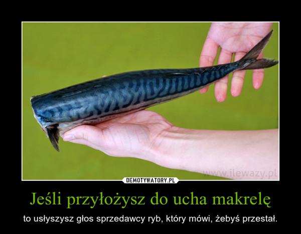 Jeśli przyłożysz do ucha makrelę – to usłyszysz głos sprzedawcy ryb, który mówi, żebyś przestał.