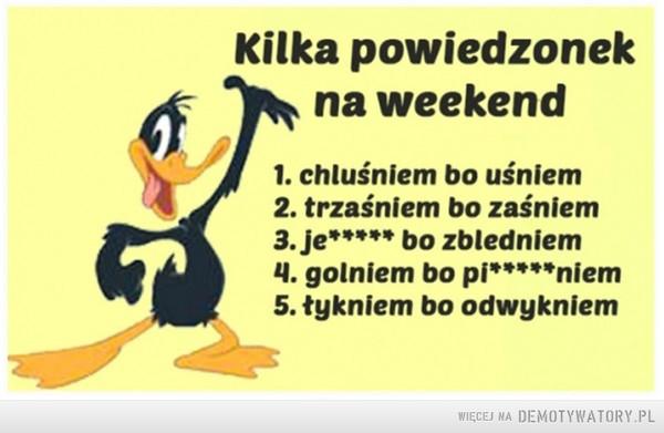 Kilka powiedzonek na weekend –