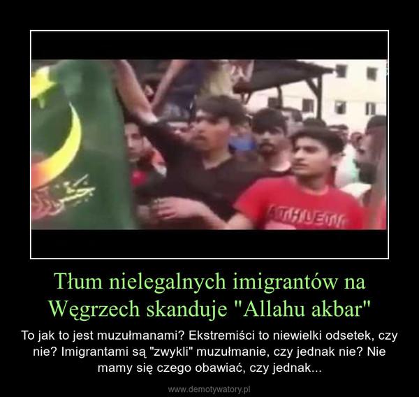 """Tłum nielegalnych imigrantów na Węgrzech skanduje """"Allahu akbar"""" – To jak to jest muzułmanami? Ekstremiści to niewielki odsetek, czy nie? Imigrantami są """"zwykli"""" muzułmanie, czy jednak nie? Nie mamy się czego obawiać, czy jednak..."""