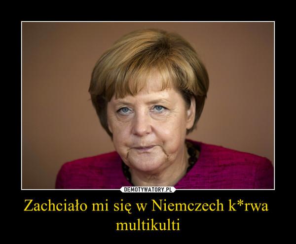 Zachciało mi się w Niemczech k*rwa  multikulti –