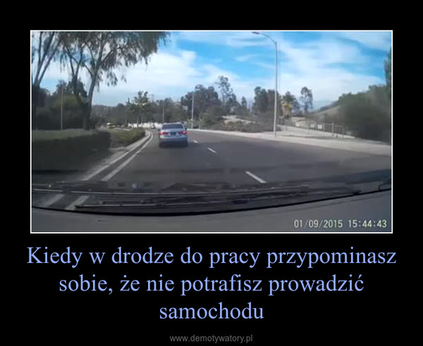 Kiedy w drodze do pracy przypominasz sobie, że nie potrafisz prowadzić samochodu –