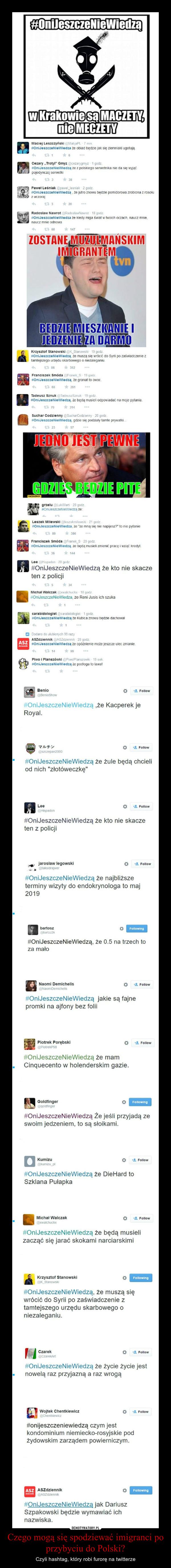 Czego mogą się spodziewać imigranci po przybyciu do Polski? – Czyli hashtag, który robi furorę na twitterze