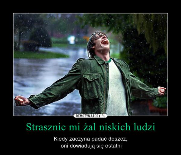 Strasznie mi żal niskich ludzi – Kiedy zaczyna padać deszcz, oni dowiadują się ostatni