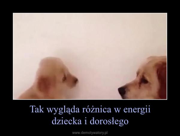 Tak wygląda różnica w energiidziecka i dorosłego –