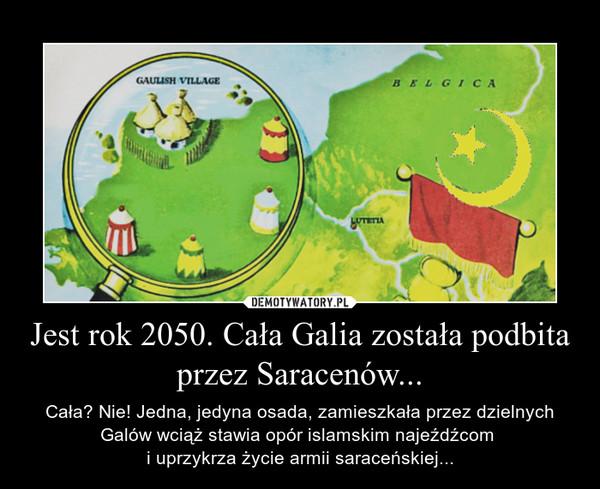 Jest rok 2050. Cała Galia została podbita przez Saracenów... – Cała? Nie! Jedna, jedyna osada, zamieszkała przez dzielnych Galów wciąż stawia opór islamskim najeźdźcom i uprzykrza życie armii saraceńskiej...