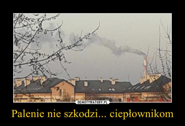 Palenie nie szkodzi... ciepłownikom –