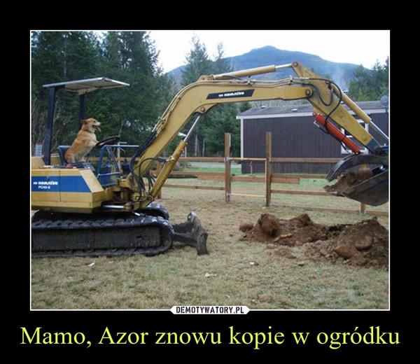 1452171156_msxdd5_600.jpg