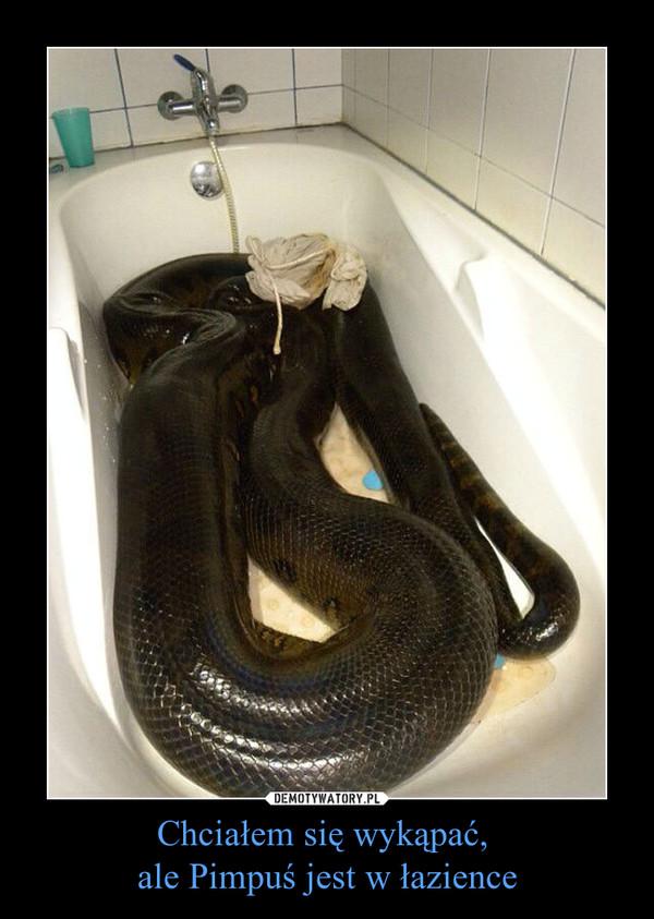 Chciałem się wykąpać, ale Pimpuś jest w łazience –