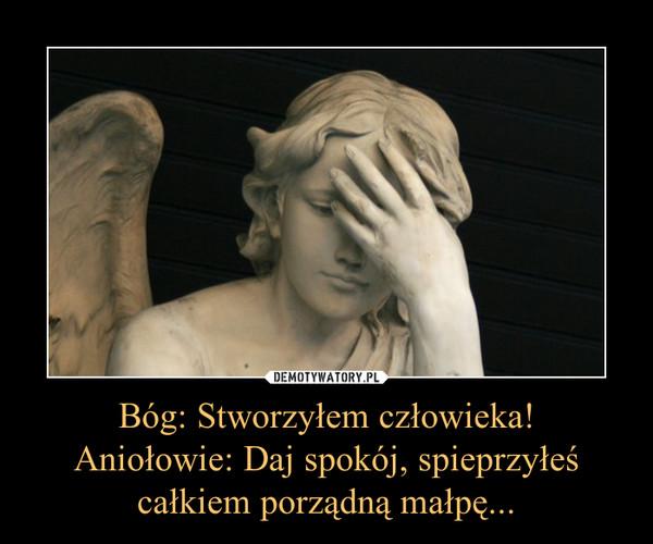 Bóg: Stworzyłem człowieka!Aniołowie: Daj spokój, spieprzyłeś całkiem porządną małpę... –