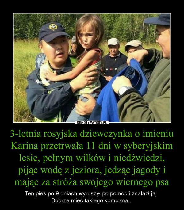 3-letnia rosyjska dziewczynka o imieniu Karina przetrwała 11 dni w syberyjskim lesie, pełnym wilków i niedźwiedzi, pijąc wodę z jeziora, jedząc jagody i mając za stróża swojego wiernego psa – Ten pies po 9 dniach wyruszył po pomoc i znalazł ją. Dobrze mieć takiego kompana...