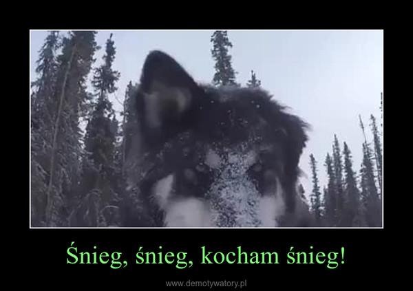 Śnieg, śnieg, kocham śnieg! –