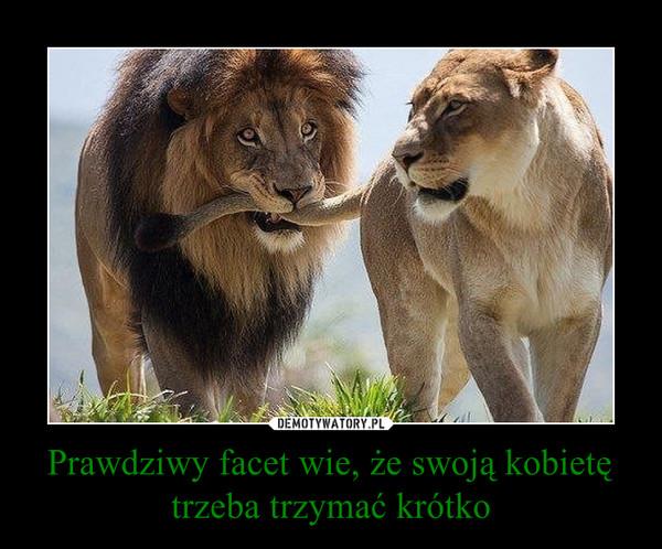 Prawdziwy facet wie, że swoją kobietę trzeba trzymać krótko –