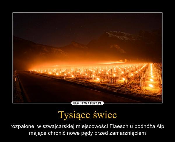 Tysiące świec – rozpalone  w szwajcarskiej miejscowości Flaesch u podnóża Alp mające chronić nowe pędy przed zamarznięciem