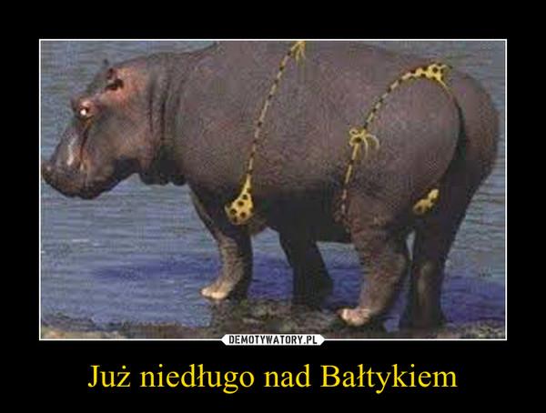 Już niedługo nad Bałtykiem –
