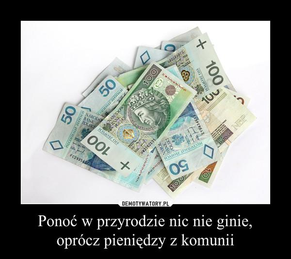 Ponoć w przyrodzie nic nie ginie,oprócz pieniędzy z komunii –
