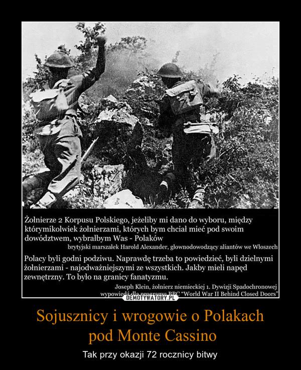 Sojusznicy i wrogowie o Polakach pod Monte Cassino – Tak przy okazji 72 rocznicy bitwy