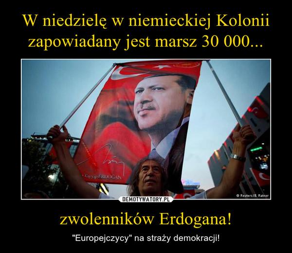 """zwolenników Erdogana! – """"Europejczycy"""" na straży demokracji!"""