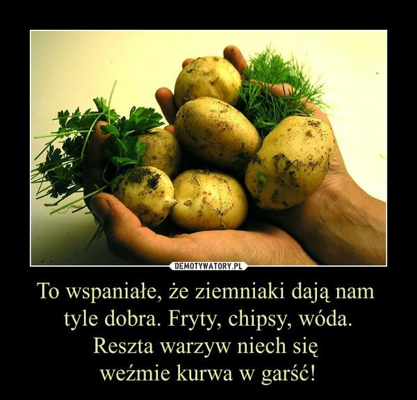 To wspaniałe, że ziemniaki dają nam tyle dobra. Fryty, chipsy, wóda.Reszta warzyw niech się weźmie kurwa w garść! –
