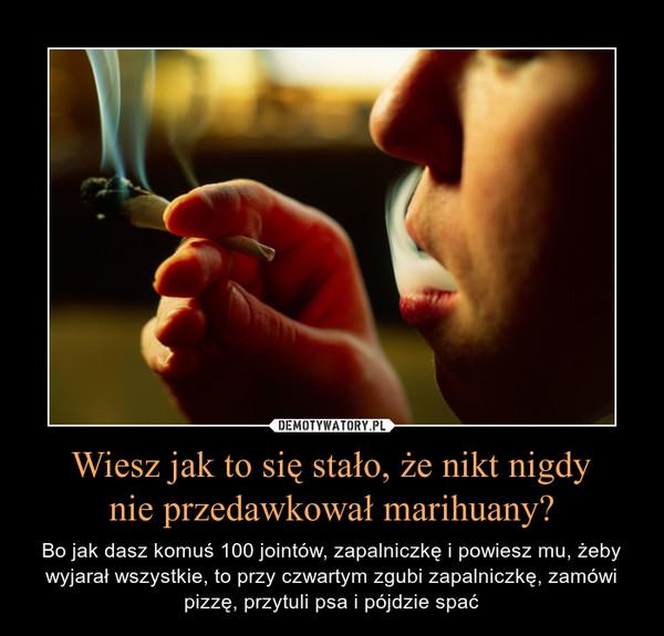 Wiesz jak to się stało, że nikt nigdynie przedawkował marihuany? – Bo jak dasz komuś 100 jointów, zapalniczkę i powiesz mu, żeby wyjarał wszystkie, to przy czwartym zgubi zapalniczkę, zamówi pizzę, przytuli psa i pójdzie spać