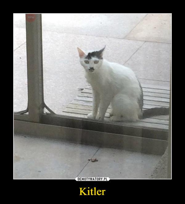 Kitler –