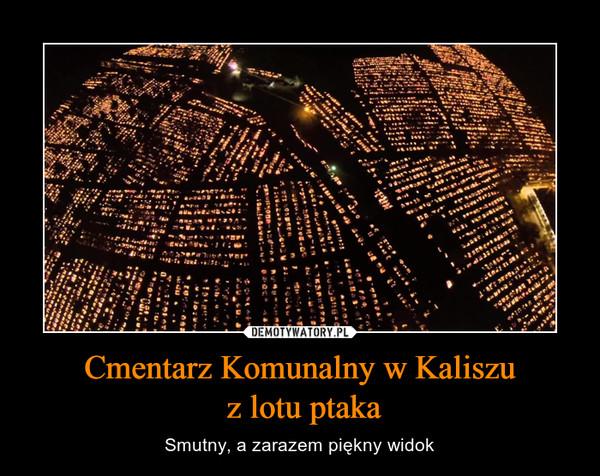 Cmentarz Komunalny w Kaliszu z lotu ptaka – Smutny, a zarazem piękny widok