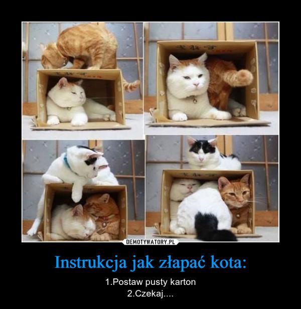 Instrukcja jak złapać kota: – 1.Postaw pusty karton2.Czekaj....