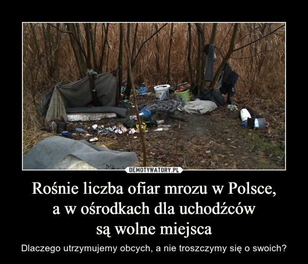 Rośnie liczba ofiar mrozu w Polsce, a w ośrodkach dla uchodźców są wolne miejsca – Dlaczego utrzymujemy obcych, a nie troszczymy się o swoich?