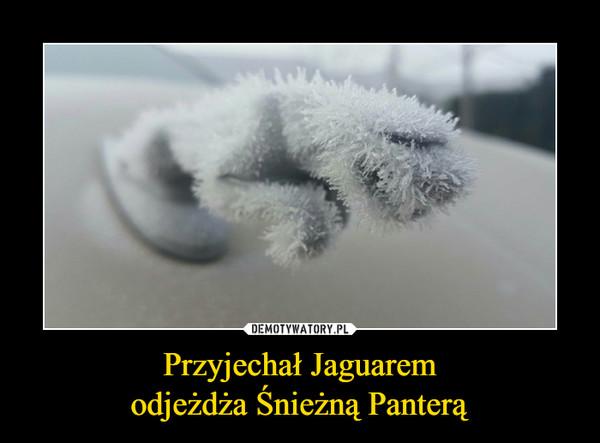 Przyjechał Jaguaremodjeżdża Śnieżną Panterą –
