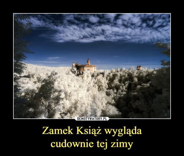 Zamek Książ wyglądacudownie tej zimy –