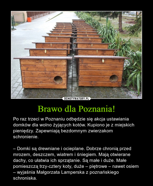 Brawo dla Poznania! – Po raz trzeci w Poznaniu odbędzie się akcja ustawiania domków dla wolno żyjących kotów. Kupiono je z miejskich pieniędzy. Zapewniają bezdomnym zwierzakom schronienie.– Domki są drewniane i ocieplane. Dobrze chronią przed mrozem, deszczem, wiatrem i śniegiem. Mają otwierane dachy, co ułatwia ich sprzątanie. Są małe i duże. Małe pomieszczą trzy-cztery koty, duże – piętrowe – nawet osiem – wyjaśnia Małgorzata Lamperska z poznańskiego schroniska.