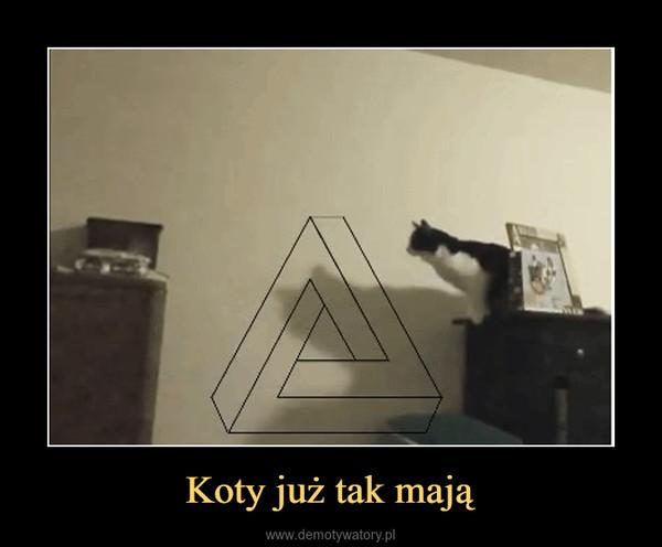 Koty już tak mają –