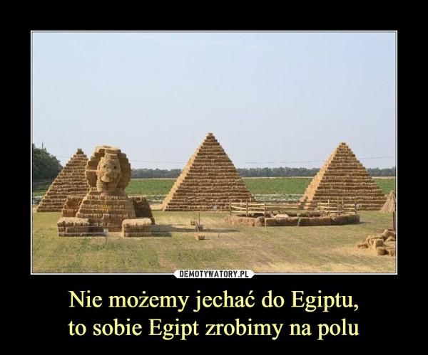Nie możemy jechać do Egiptu,to sobie Egipt zrobimy na polu –