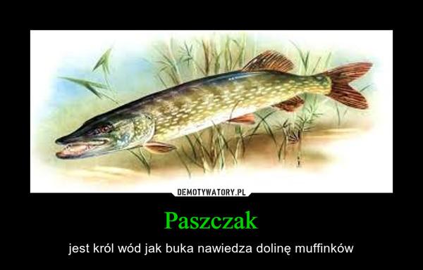 Paszczak – jest król wód jak buka nawiedza dolinę muffinków