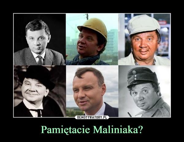Pamiętacie Maliniaka? –
