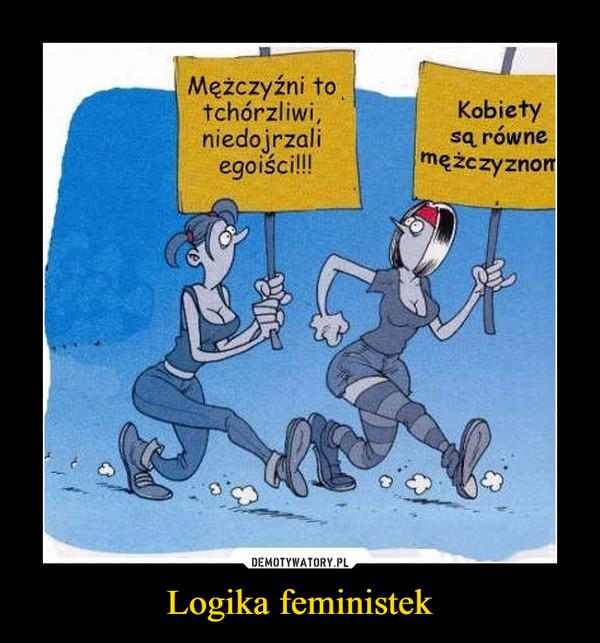 Logika feministek –  Mężczyźni to tchórzliwi niedojrzali egoiści! Kobiety sa równe mężczyznom!