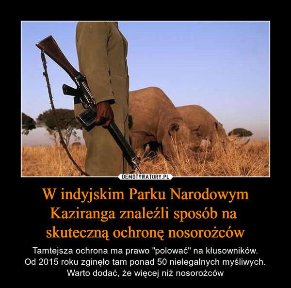 """W indyjskim Parku Narodowym Kaziranga znaleźli sposób na skuteczną ochronę nosorożców – Tamtejsza ochrona ma prawo """"polować"""" na kłusowników.Od 2015 roku zginęło tam ponad 50 nielegalnych myśliwych. Warto dodać, że więcej niż nosorożców"""