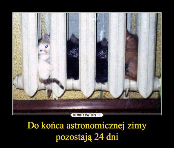 Do końca astronomicznej zimy pozostają 24 dni –