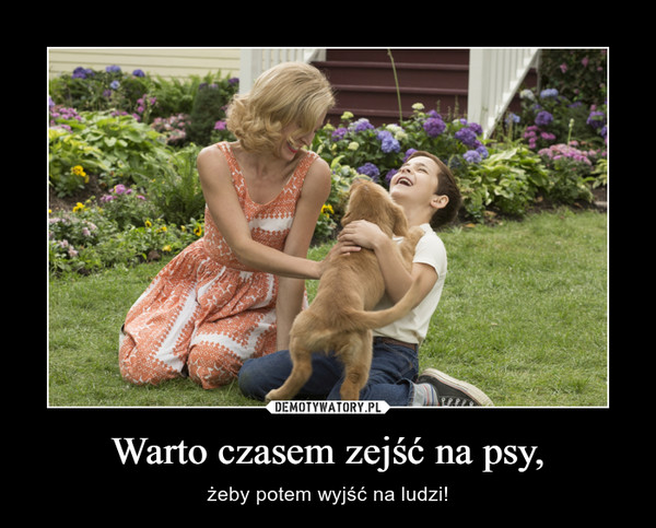 Warto czasem zejść na psy, – żeby potem wyjść na ludzi!