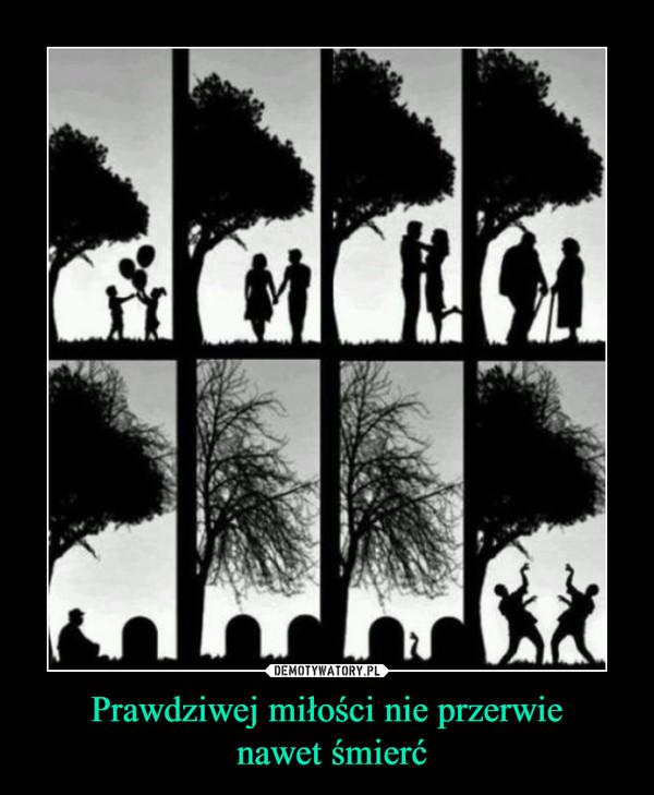 Prawdziwej miłości nie przerwie nawet śmierć –