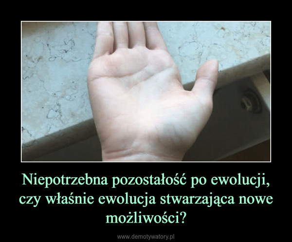 Niepotrzebna pozostałość po ewolucji, czy właśnie ewolucja stwarzająca nowe możliwości? –