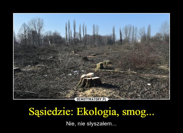 Sąsiedzie: Ekologia, smog... – Nie, nie słyszałem...