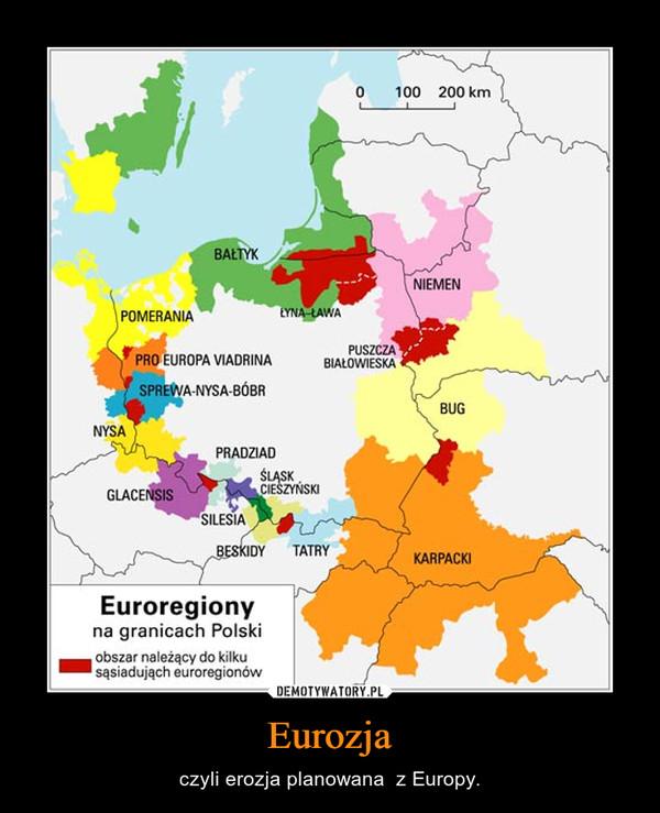Eurozja – czyli erozja planowana  z Europy.