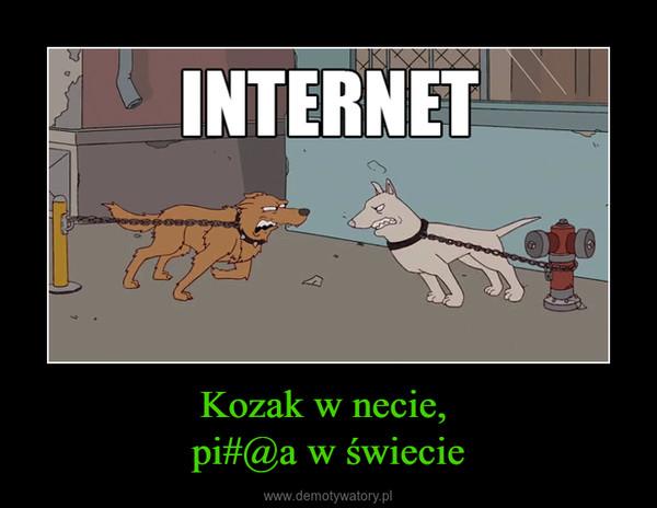 Kozak w necie, pi#@a w świecie –