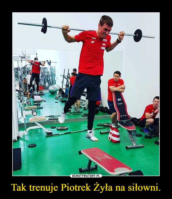 Tak trenuje Piotrek Żyła na siłowni. –