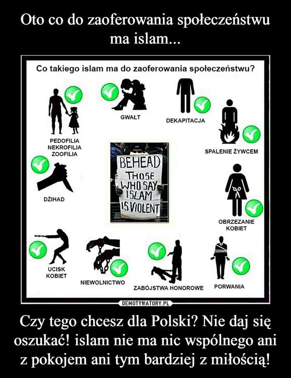 Czy tego chcesz dla Polski? Nie daj się oszukać! islam nie ma nic wspólnego ani z pokojem ani tym bardziej z miłością! –