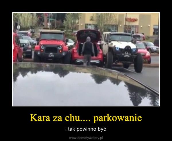 Kara za chu.... parkowanie – i tak powinno być