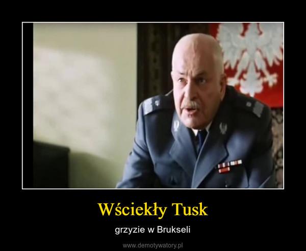 Wściekły Tusk – grzyzie w Brukseli