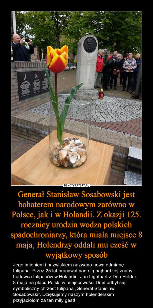 Generał Stanisław Sosabowski jest bohaterem narodowym zarówno w Polsce, jak i w Holandii. Z okazji 125. rocznicy urodzin wodza polskich spadochroniarzy, która miała miejsce 8 maja, Holendrzy oddali mu cześć w wyjątkowy sposób