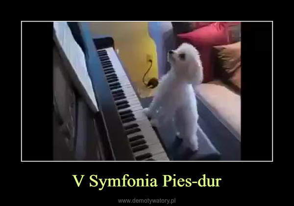 V Symfonia Pies-dur –