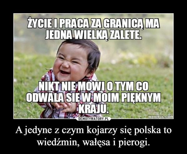 A jedyne z czym kojarzy się polska to wiedźmin, wałęsa i pierogi. –